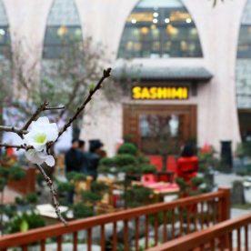 Đánh giá chất lượng buffet lẩu nướng tại Sashimi BBQ Garden