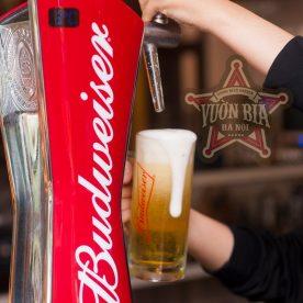 Ly bia tươi Budweiser và món ăn tại Vườn Bia Hà Nội