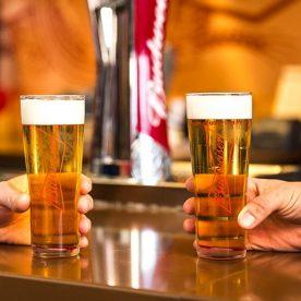 Vườn Bia: 8 Sắc Thái Xanh Lá tặng bia
