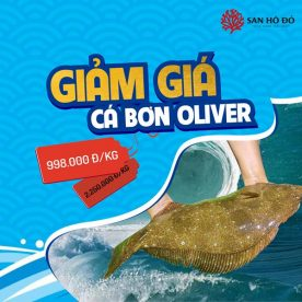 Nhà hàng hải sản San Hô Đỏ - 2B Nguyễn Thị Thập ưu đãi 20% sashimi và 56% cá bơn Oliber 3